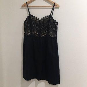 The loft lace cotton dress